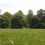 Farnham Park, Farnham