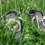 Shoes in grass, Farnham