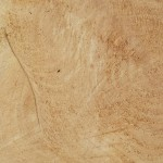 Cut wood, Aldershot
