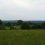 Sign in a field, Farnham