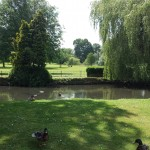 Duck pond, Aldershot