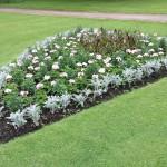 Flowerbed, Manor Park, Aldershot