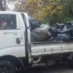Clearing leaves, Bucharest, Romania