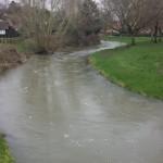 Flooded river Wey, Farnham