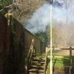 Smoke in the park, Farnham