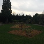 Planted flowerbeds, Manor Park, Aldershot