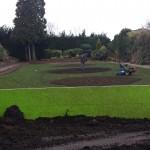 New flowerbeds, Manor Park, Aldershot