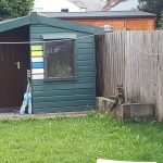 Cat and Summerhouse, Alton