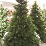 Christmas Tree shopping, London