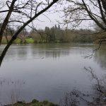 King's Pond, Alton